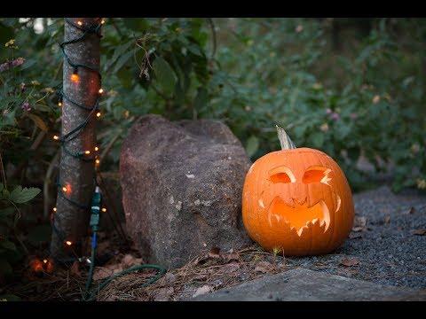 Halloween at the BOO-tanical Garden!
