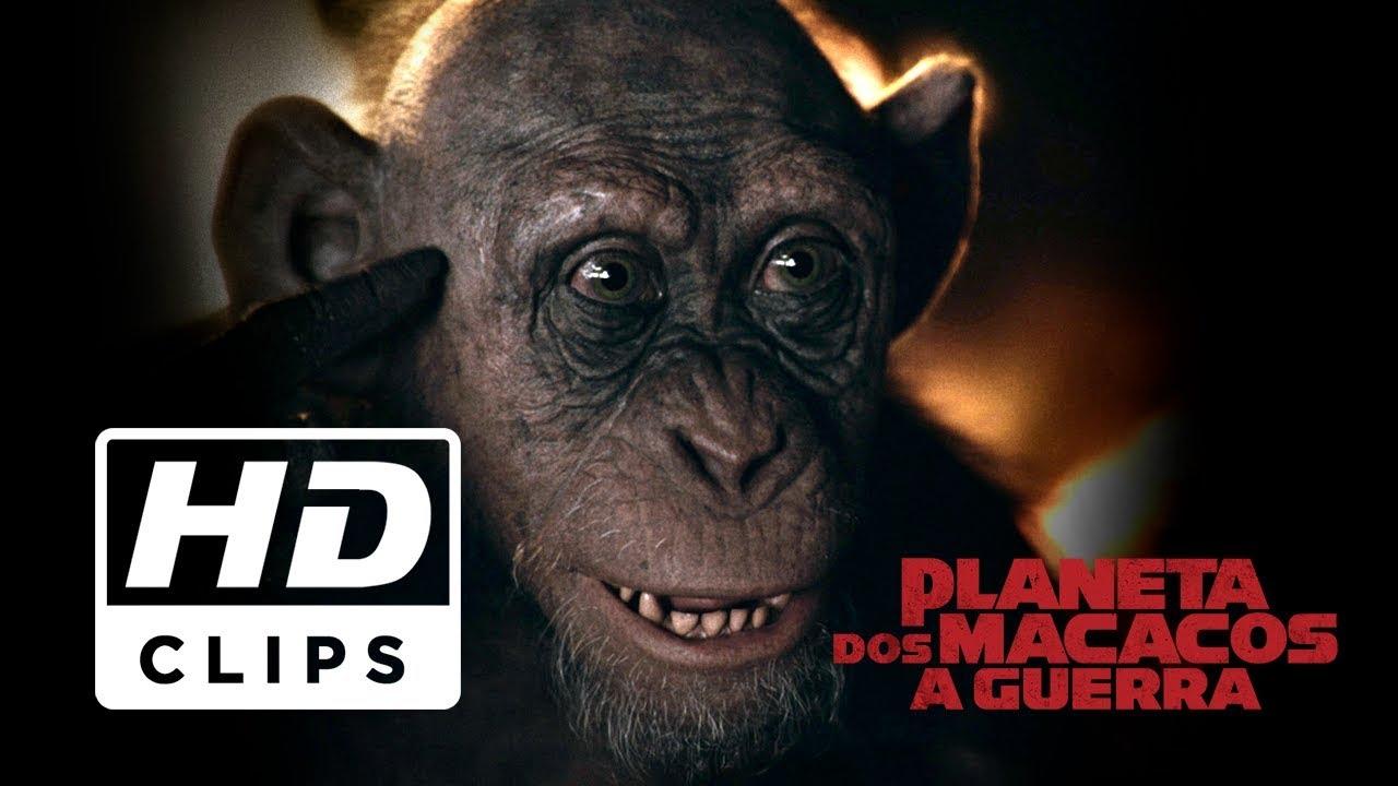 e9740432285a0 Planeta dos Macacos  A Guerra