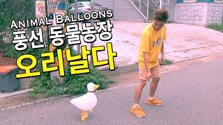 ????!!! ?? ????? ???? - ?? (Cute Animal balloons)