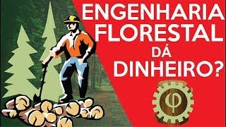 Download ENGENHARIA EM FOCO - com o eng.º FELIPE PEREIRA
