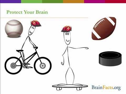 Brain Awareness Week Classroom Activities
