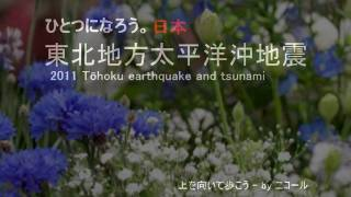 東北地方太平洋沖地震(2011 Tōhoku earthquake and tsunami)
