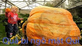 BAO NOI ONLINE || TRUYỀN THUYẾT HALLOWEEN và Lễ hội hóa trang Ma Quỉ trên khắp thế giới