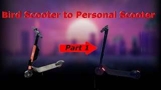 Bird Scooter to Personal Scooter Tutorial [Part 1]
