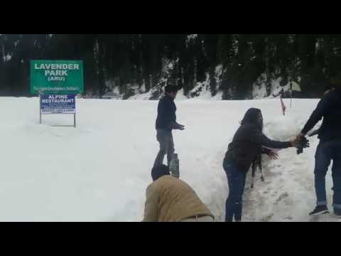 Guest enjoying snow at Aru valley, Kashmir