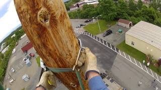 Lineman Class 75ft Pole National Grid