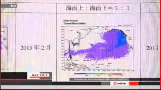 March 2013 Power Outage @ Fukushima NPP (MsMilkytheclown)