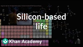 Silicon Based Life