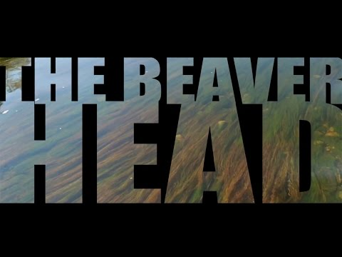 Epic Montana Trout Rivers - THE BEAVERHEAD