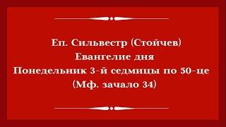 Еп. Сильвестр (Стойчев). 22.06.2020. Евангелие дня с толкованием