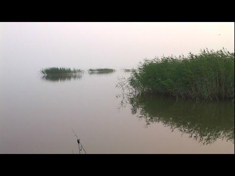 Вести с водоема: Аткуль озеро