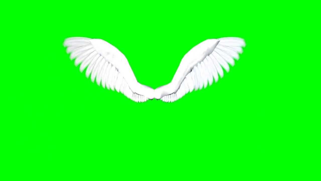 Angel Wings Free Green Screen 1