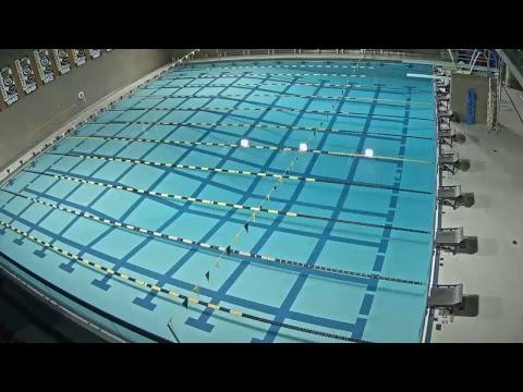 Gustavus Swimming & Diving hosts Carleton (1/12/18)