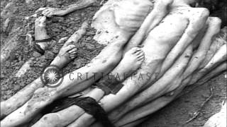 Download Video Naked dead bodies of Jewish inmates tied together before burial at concentration ...HD Stock Footage MP3 3GP MP4
