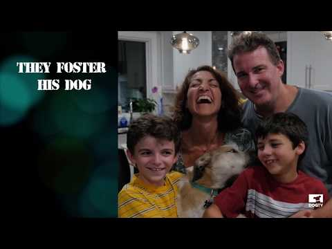 Meet Nola - DOGTV Giving Tuesday Campaign - Dogs on Deployment
