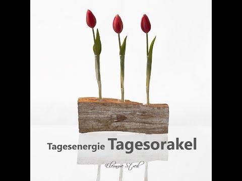 Tagesorakel  - Donnerstag 25.04.2019