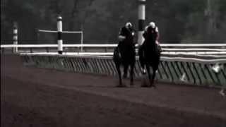 Ruffian - Trailer