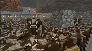 Massive Minecraft Cow farm! | Our Minecraft Adventure # 15
