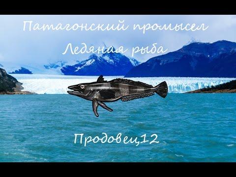 Русская рыбалка 3.99 - Патагонский промысел - Ледяная рыба