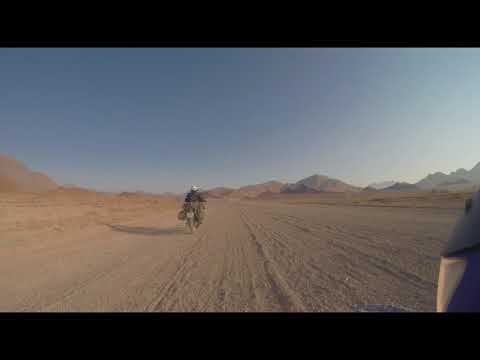 Warthogs Namibia Motorcycle Adventure Barlow's Photos