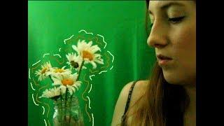 asmr with flowers (various sounds, rambling)