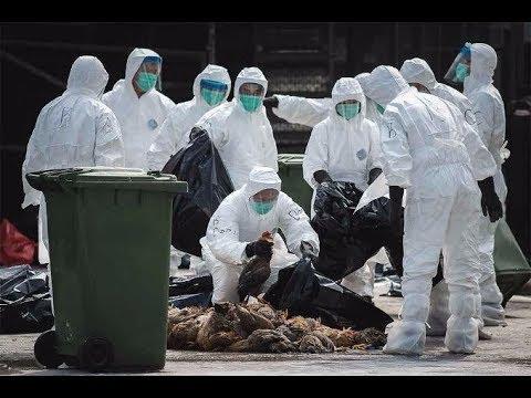 Китай Коронавирус последние новости о Чуме 2020. Умрут все?????