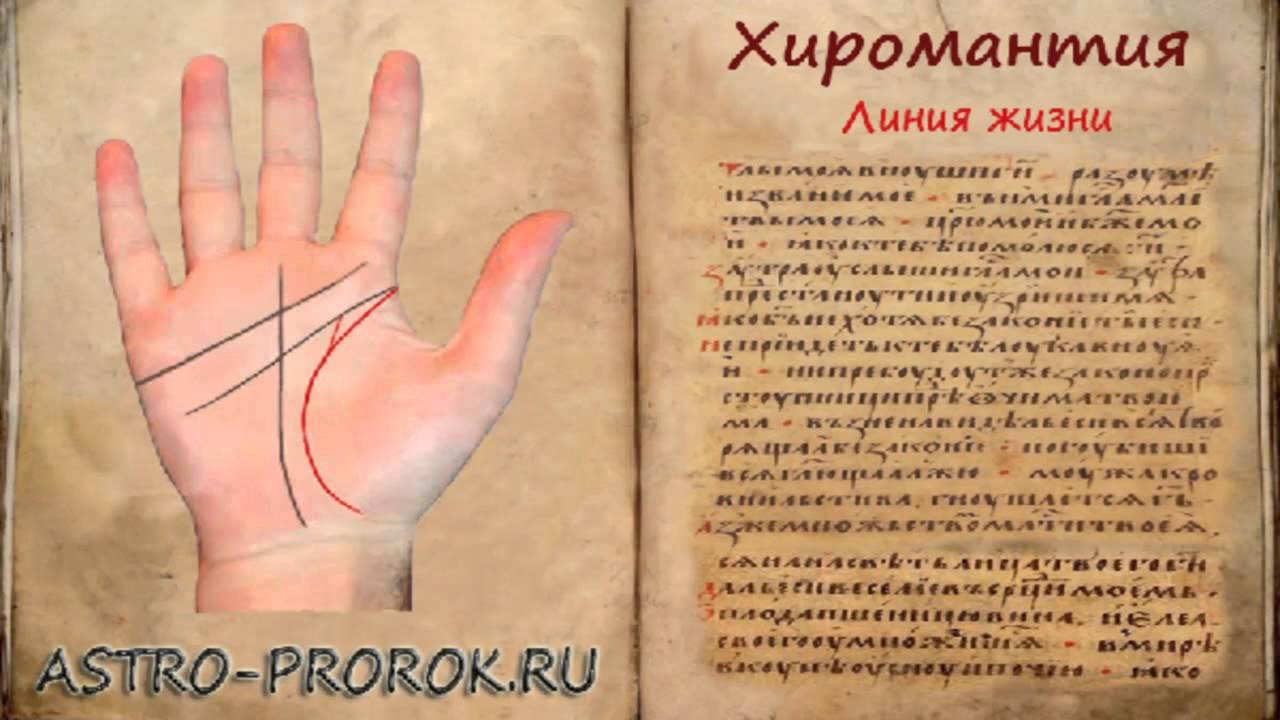 тамара глоба гороскоп 2017 дева