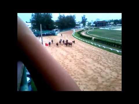 ม้าแข่ง แบบสนุก ๆ