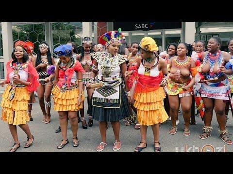 Download Amazing African Traditional Zulu Wedding (uDwendwe)