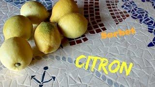 Recette  Sorbet citron