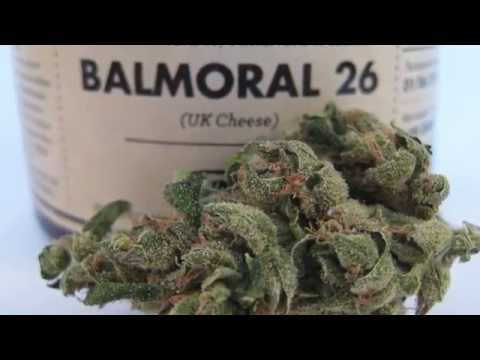 UK Cheese (Balmoral 26) - Tweed