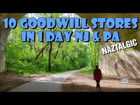 10 GOODWILL stores in one day (PA & NJ) Video Games, Toys, Movies