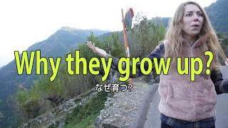 凄すぎてロシア人女性が目まい!世界に誇れる唯一の所! Terrible and dizzy ! The only thing that boasts of the world is  in Japan thumbnail