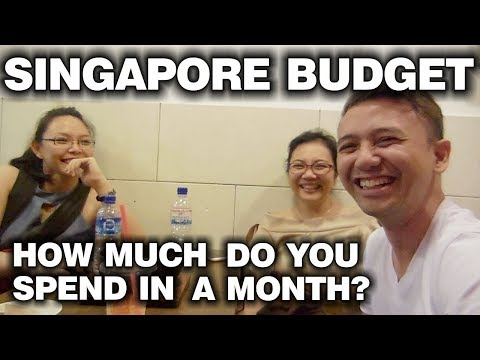 Singapore Budget | How Much Do You Spend In A Month? | Recommended Tips