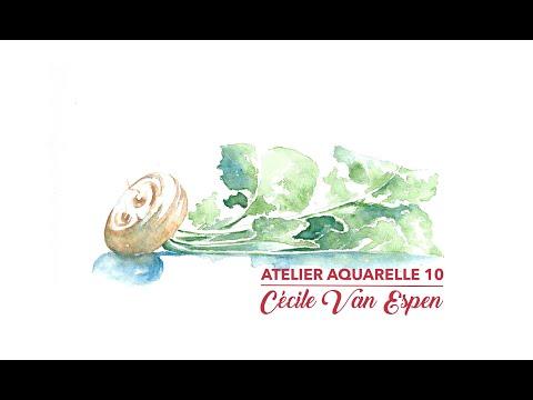 Atelier Aquarelle 10 : Navet