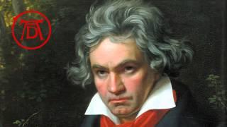 Beethoven - Piano Sonata No. 1, 2nd Movement, Op. 2 No. 1 [HQ]