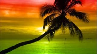 Nice Times Riddim Instrumental/ Version [March 2015]