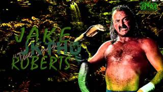 Jake The Snake Roberts 1st WWF Theme (Arena Effects)