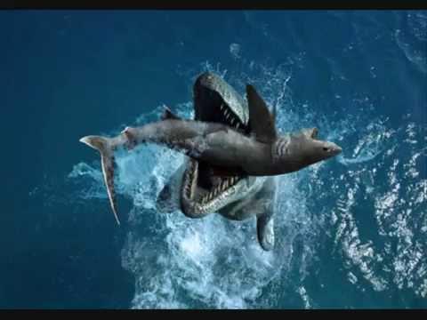 Liopleurodon vs tylosaurus - YouTube  Liopleurodon vs...