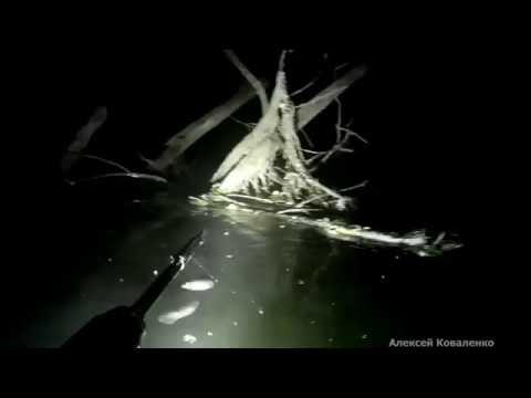 ночная подводная охота 07 06 2016