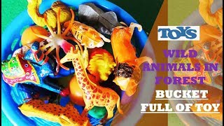 Box of Animals Toys | Box Full of Toys | Learn Animals |Kids Toys  Kids Fun  Nursery Rhymes