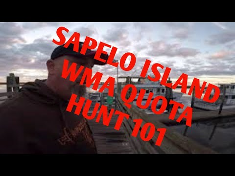 Sapelo Island WMA Deer/Hog Hunt, Tips And Camp Tour!