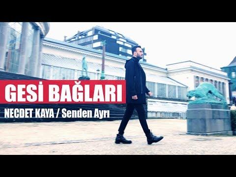 Necdet Kaya - Gesi Bağları (Official Audio)