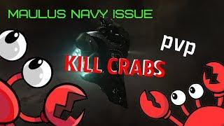 EVE Online/Wild Haze - Maulus Navy Issue solo pvp