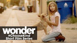 """Wonder (2017 Movie) #ChooseKind Short Film Series – """"Fuzzy Spark"""""""