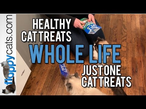 Healthy Cat Treats: Whole Life Just One Cat Treats: Ragdoll Cats Get Excited about Duck and Turkey