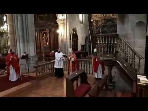 El obispo de Lugo oficia una inusual misa de Domingo de Ramos