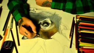Deer Drawing Time Lapse