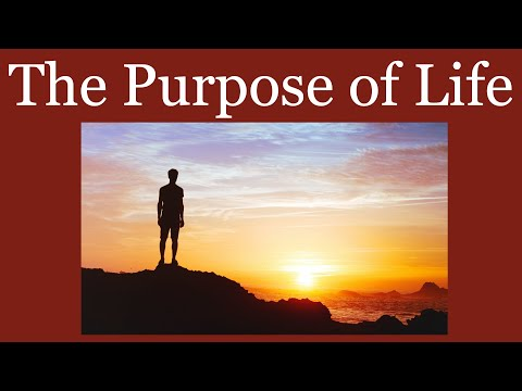 Father Mike Schmitz - The Purpose of Life