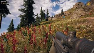 Far Cry® 5 Flying Bison